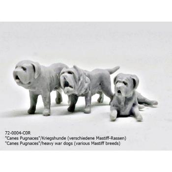 1:72 FIGUREN 72-0005-C0R Irish Wolfhound STENFALK